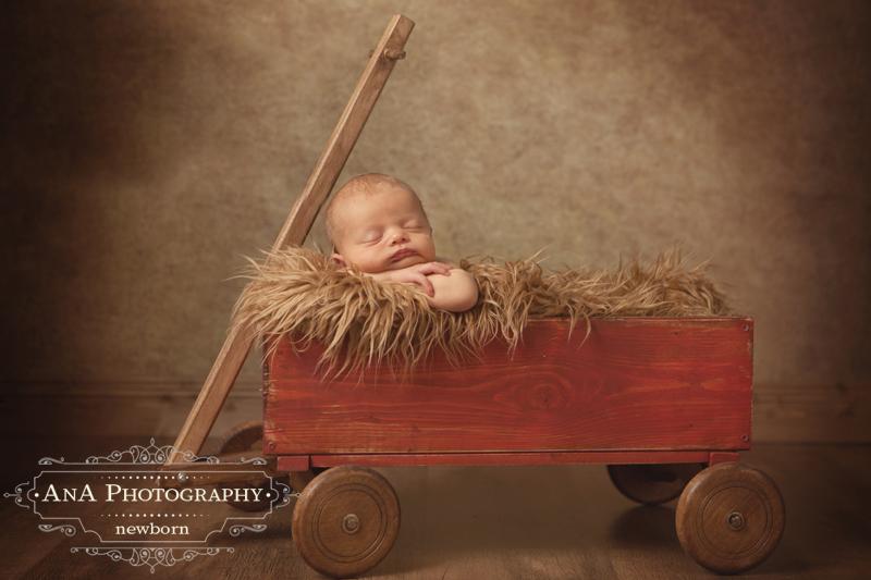 baby-photographer-launceston